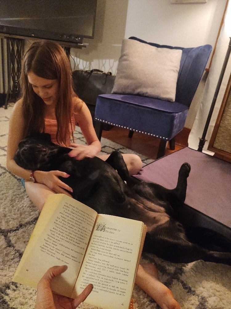 Dog snuggling girl while being read to